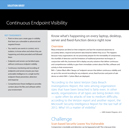 Solution Brief: Continuous Endpoint Visibility