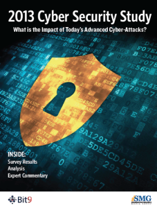 2013-Cyber Security Study