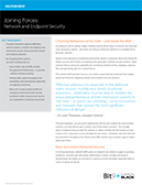 Joining Forces: Network and Endpoint Security